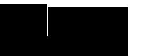IMMSA logo