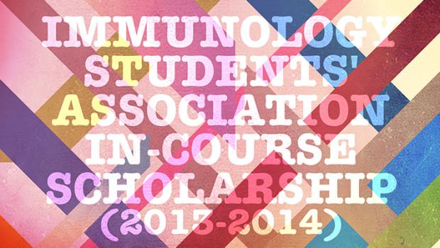 IMMSA Scholarship2